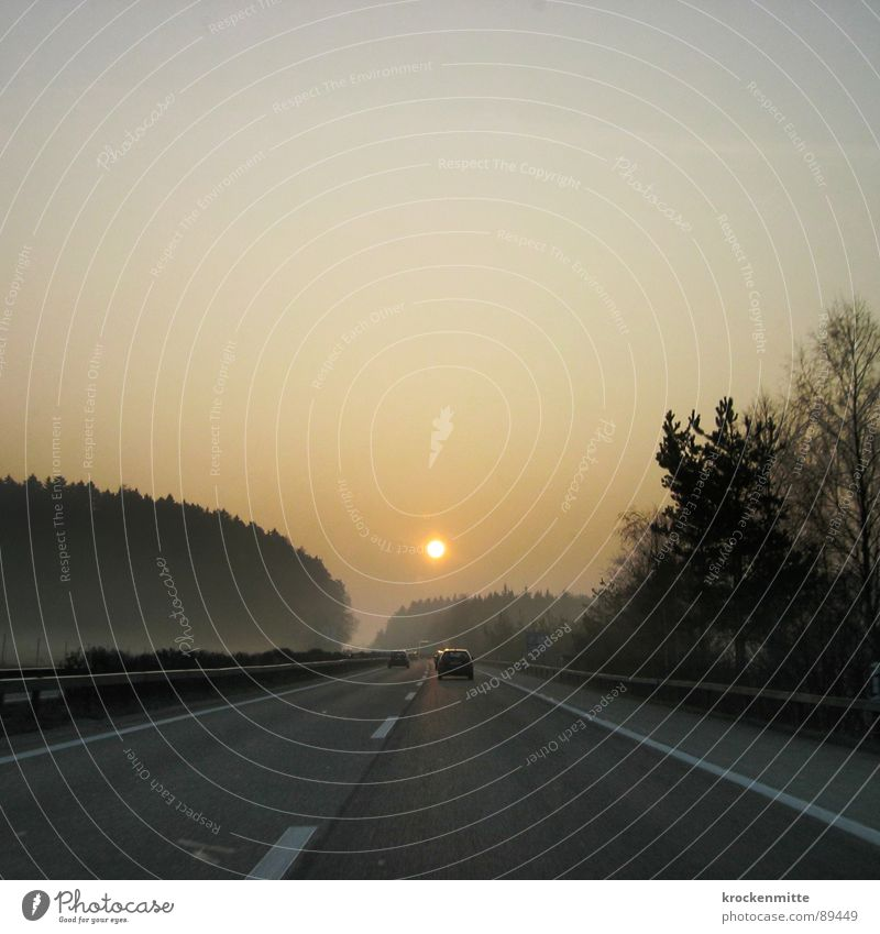 sunrise Highway Transport Sunrise Tree Morning Driving Forest Progress Switzerland Center line Crash barrier Commute Vehicle Car Sunbeam Speed Physics Longing