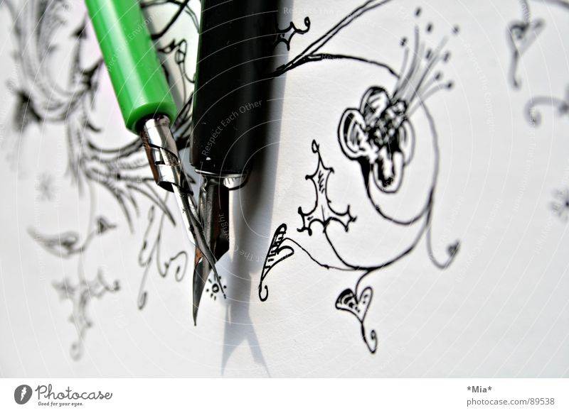 curlicue Ink Paper Painted Earmarked Flower Curlicue White Black Green Feather Image Shadow