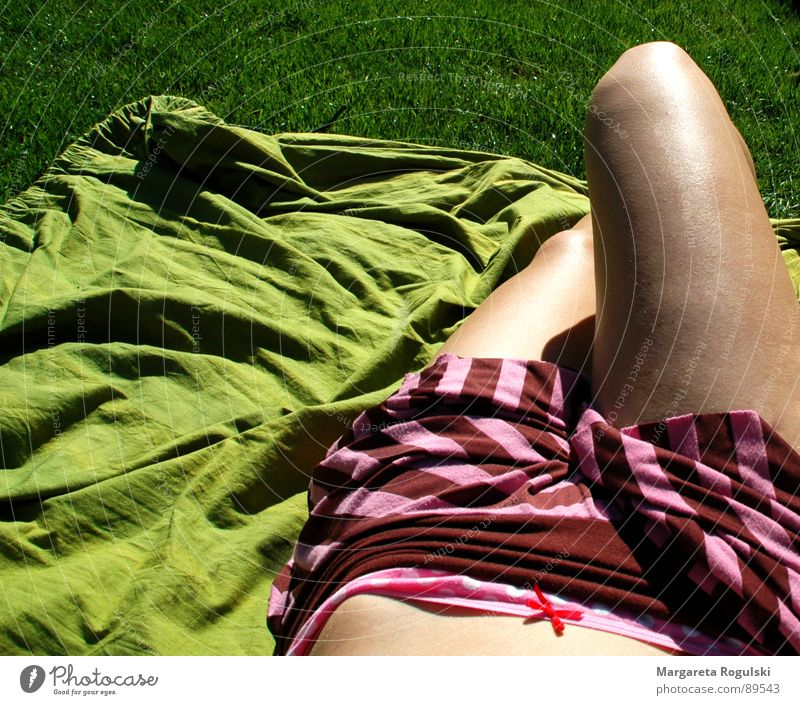 Sun Green Summer Meadow Grass Spring Legs Weather Stomach Blanket