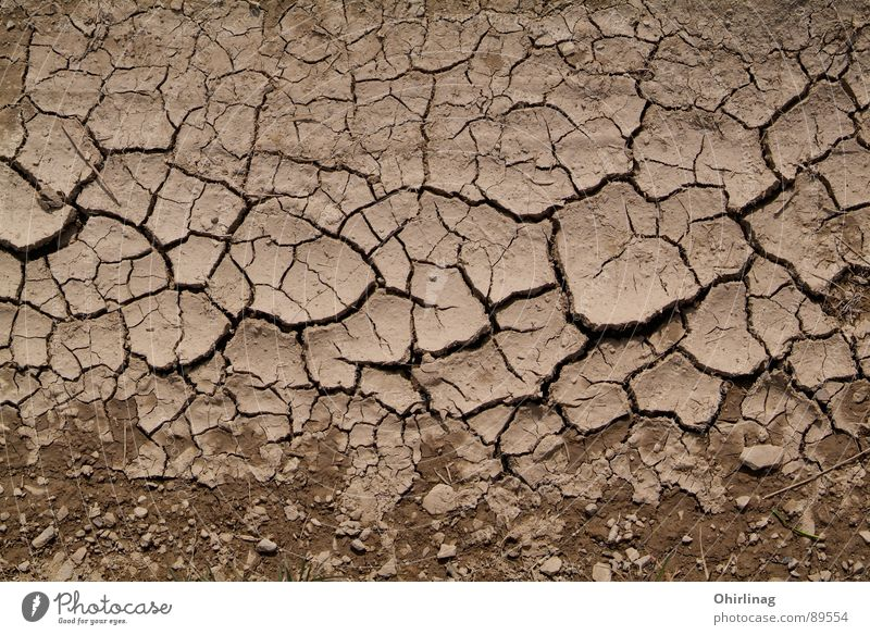 The crust Structures and shapes Background picture Crack & Rip & Tear Brown Beige Impersonal Badlands Earth Sand Grief Distress wallpapers Landscape Death Empty