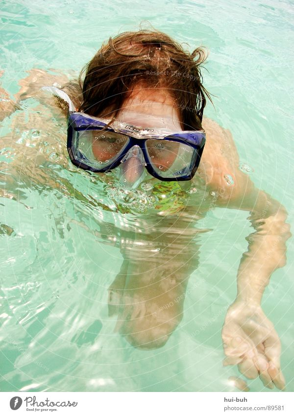 Not swimmer?! Dive Diving goggles Eyeglasses Breathe Air Clean Spit Vacation & Travel Stick Wet Physics Oxygen Emerge Sleep Dream Cot Calm Bla Splash of water