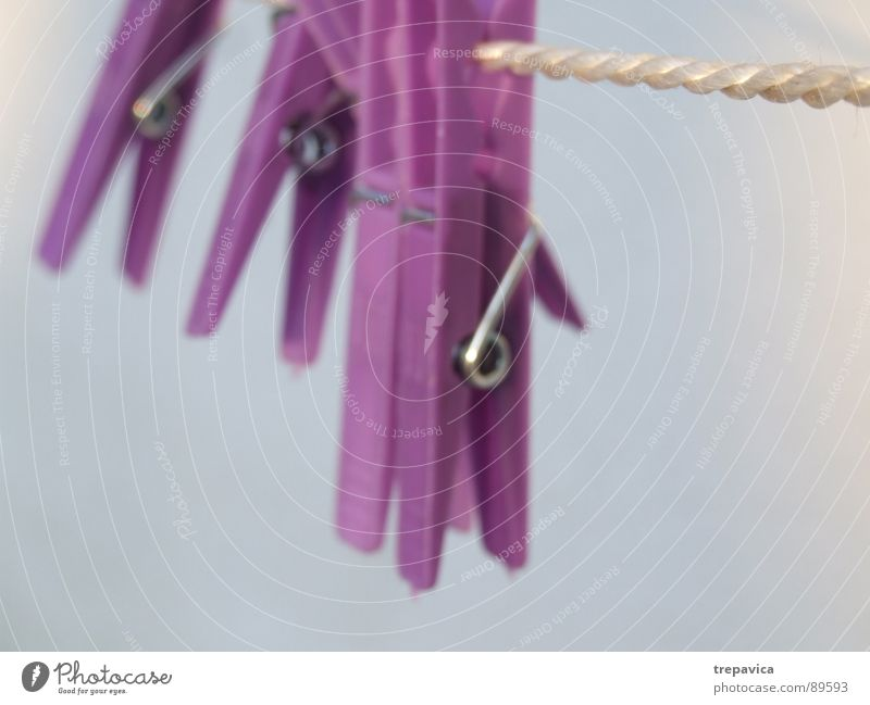 Blue Relaxation Rope Clothing Violet To hold on Statue Dry Laundry Hang up Clothes peg