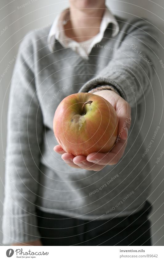 ¿Una manzana? Give Offer Donate Gift Hand Sweater Wool sweater Shirt Red Green Vitamin Fruit Apple Healthy Eating