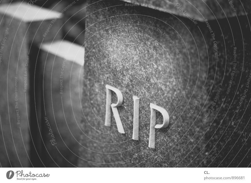 R.I.P. Tombstone Stone Characters Sadness Grief Death Transience Funeral Cemetery Epitaph Black & white photo Exterior shot Close-up Deserted Day