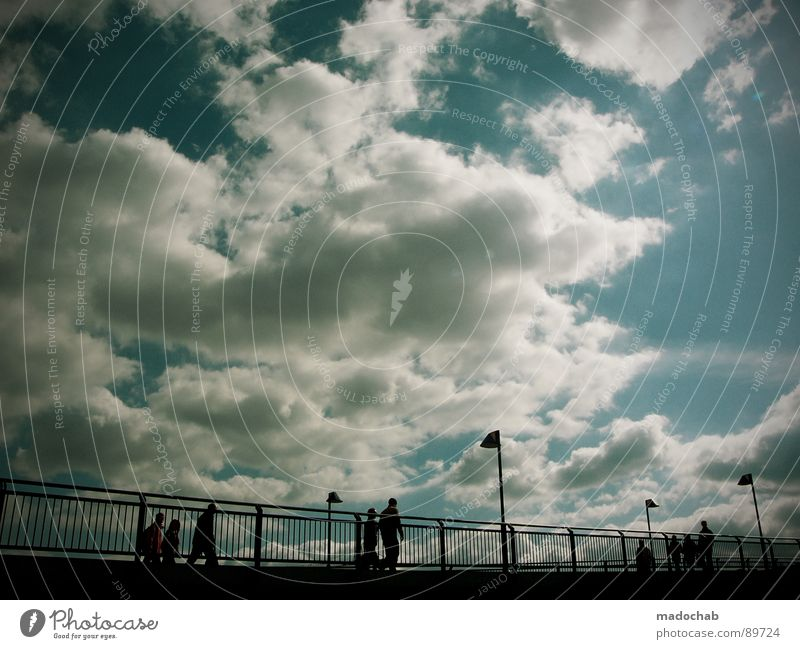 Human being Sky Blue Summer Sun Clouds Cold Life Autumn Movement Freedom Flying Going Above Together Weather