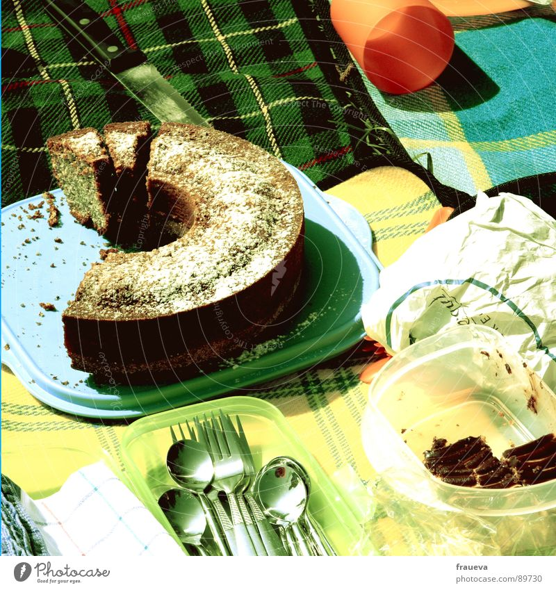 Anyone else want a cake? Picnic Tupperware Checkered Green Yellow Meal Summer Retro Seventies Bread Sliced Cake Plastic container Spoon Cutlery Baked goods