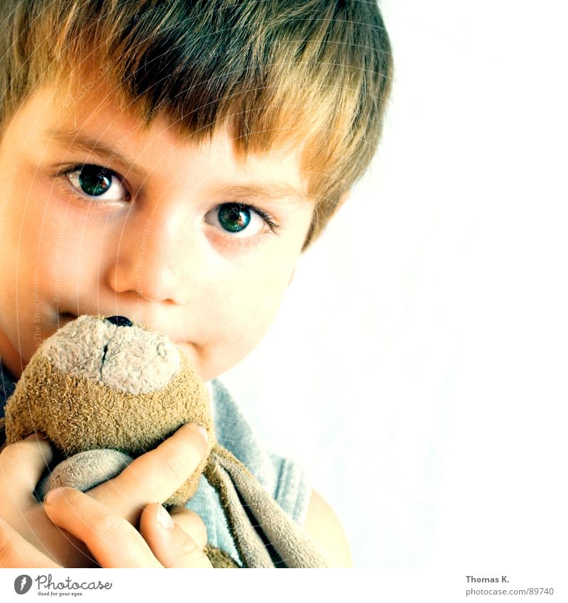 Child Eyes Boy (child) Hare & Rabbit & Bunny Cuddling Cuddly toy Caresses Junior