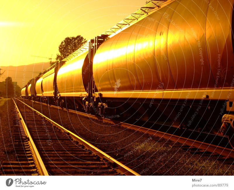 long journey Railroad Railroad tracks Canada Sun Freight train Logistics Railroad car Central perspective Sunlight Warm light Warm colour Long Building line