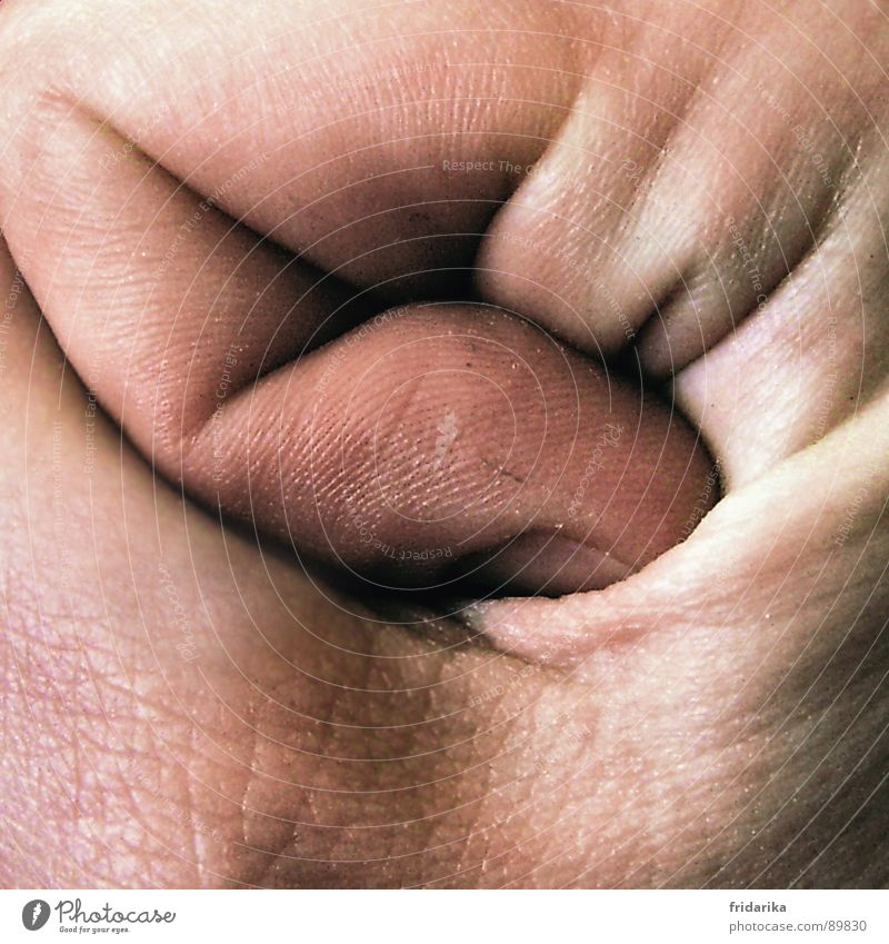 finger crease Skin Hand Fingers Nature Line To hold on Broken Near Anger Power Safety Fist Narrow Force curled Wrinkles Colour photo Close-up Detail Man