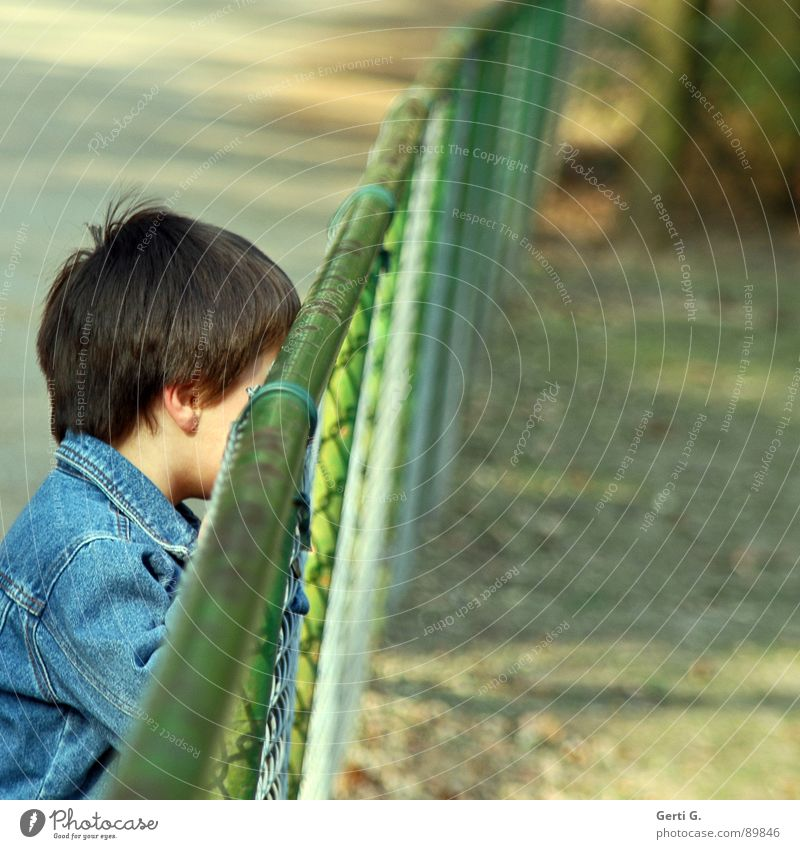 undercover Exclude Solitary Child Human being Jeans jacket Fence Grating Border Barrier Stop Diagonal Enclosure Zoo Invisible Hide Backwards Captured Green