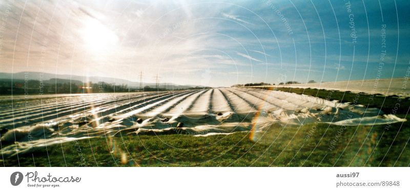 Work and employment Autumn Field Large Agriculture Panorama (Format) Covers (Construction)