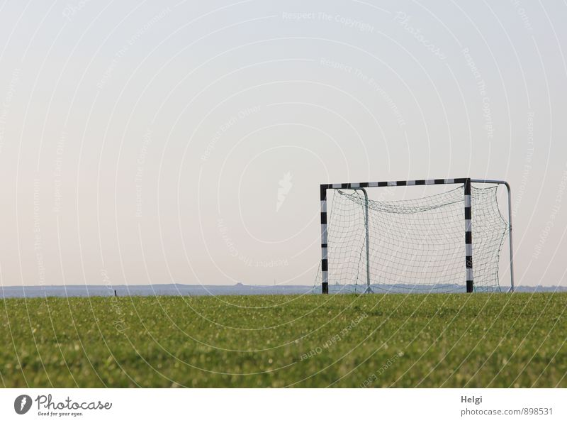 Patience until the whistle. Leisure and hobbies Playing Summer Sports Ball sports Soccer Goal Football pitch Landscape Grass Stand Wait Authentic Sharp-edged