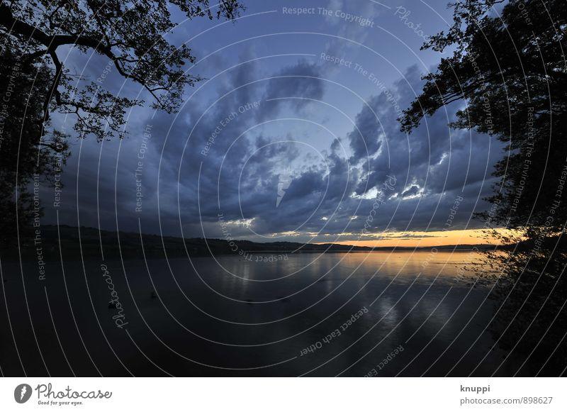 Sky Nature Blue Water Summer Sun Tree Landscape Clouds Black Environment Warmth Natural Lake Horizon Air