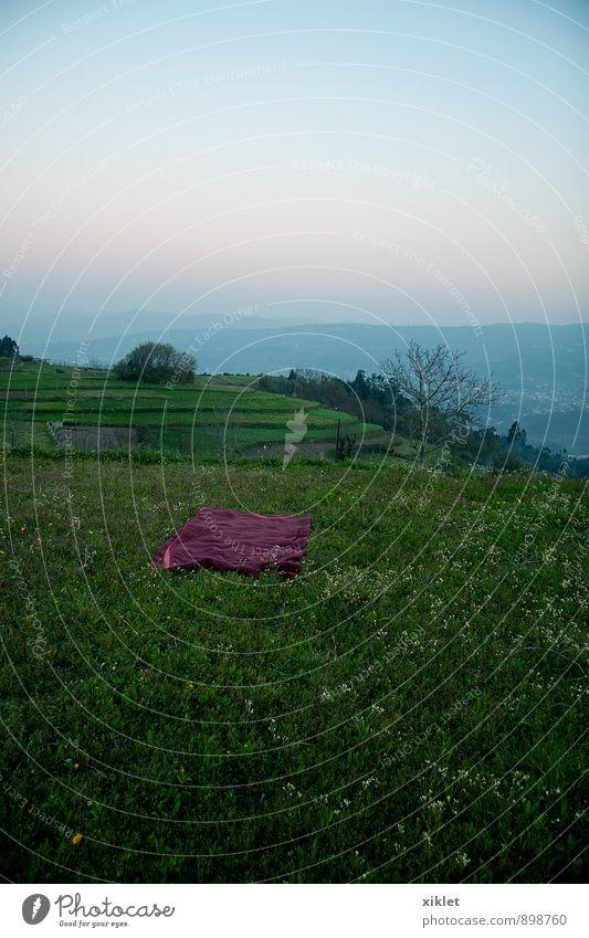 air office Sky Blue Beautiful Green Summer Relaxation Loneliness Calm Joy Sadness Grass Natural Freedom Horizon Lie Dream