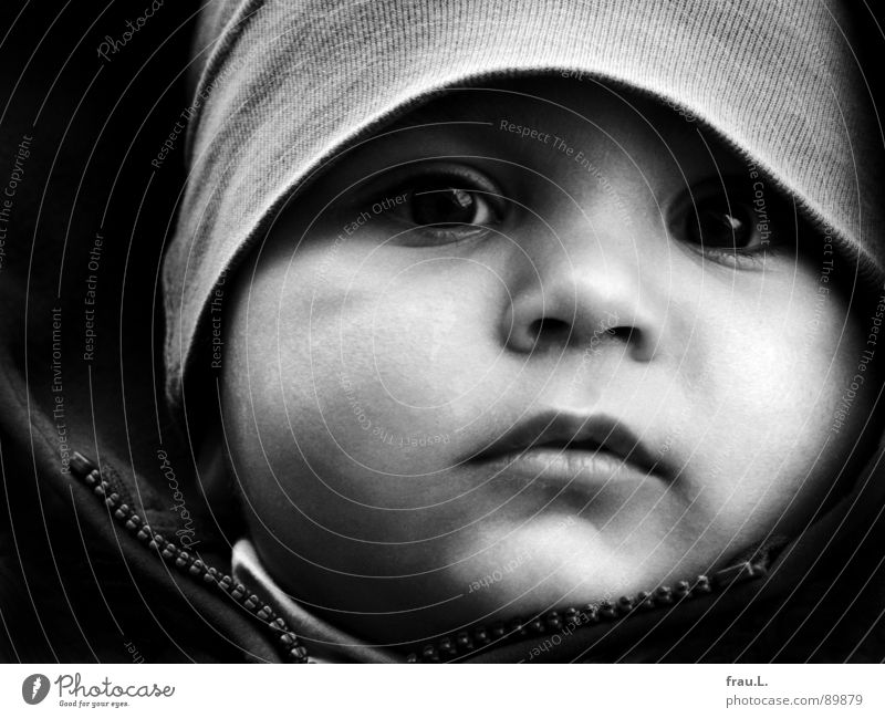 Human being Child Face Happy Think Baby Observe Concentrate Toddler Safety (feeling of) Earnest Prince Charming