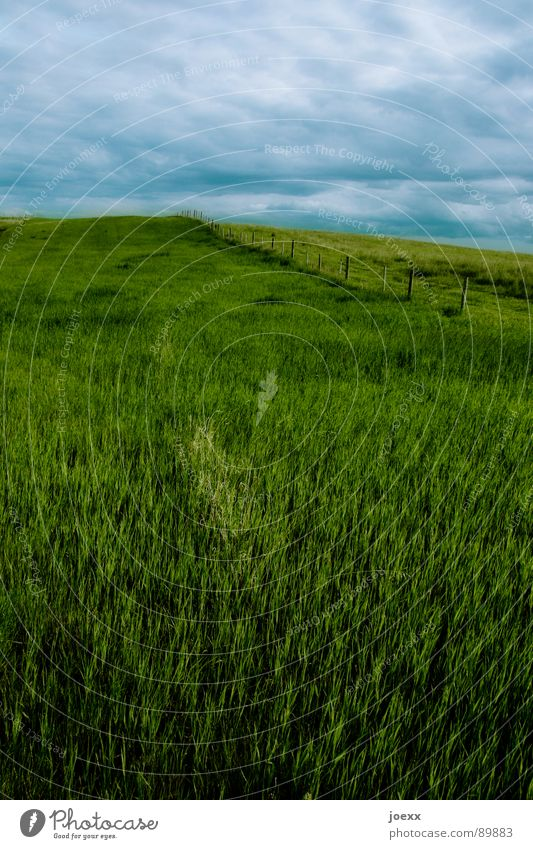 Sky Blue Green Clouds Far-off places Meadow Landscape Gray Grass Horizon Leisure and hobbies Hill Infinity Pasture Skyline Storm