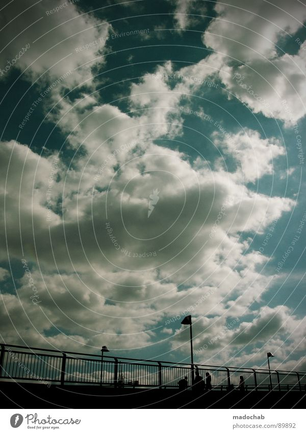 Human being Sky Blue Summer Clouds Cold Life Autumn Movement Freedom Flying Going Above Together Weather Walking