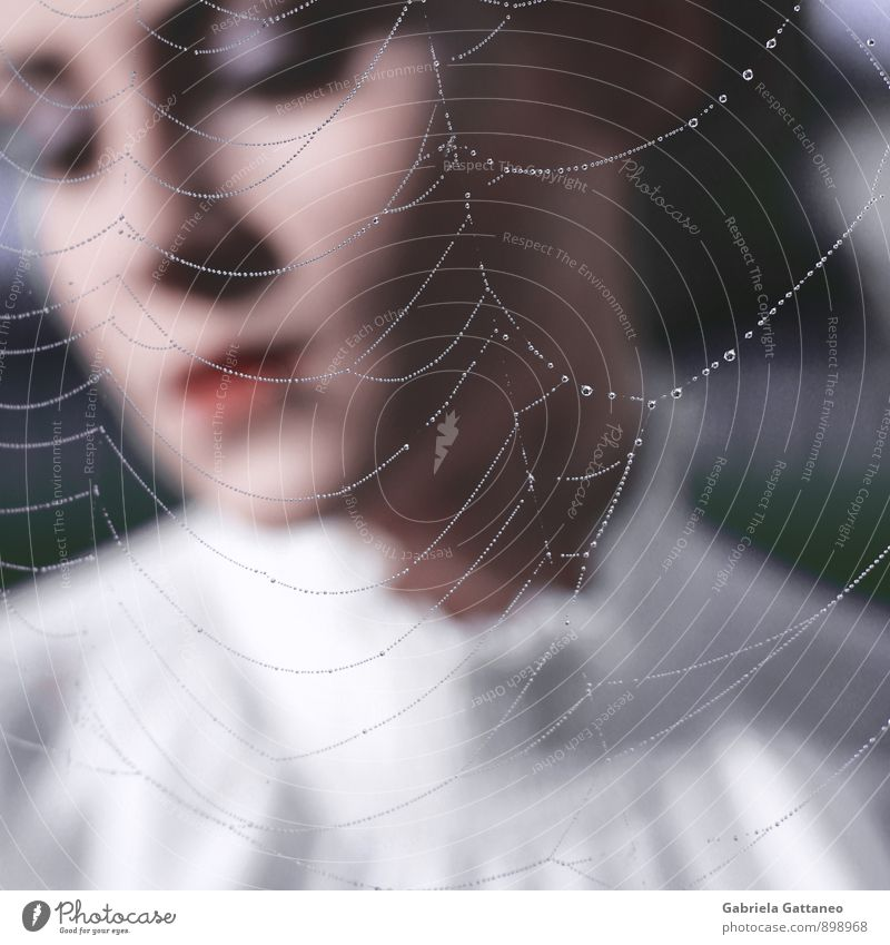 the breath II Feminine 1 Human being 18 - 30 years Youth (Young adults) Adults To enjoy Calm Spider's web Net Dew Captured Hide Romance Colour photo