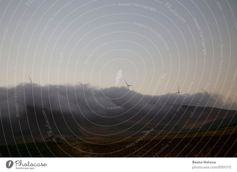 boasting Nature Landscape Elements Sky Summer Weather Wind Fog Sicily Esthetic Dark Wild Blue Brown Gray Energy Wind energy plant Fog bank Envelop