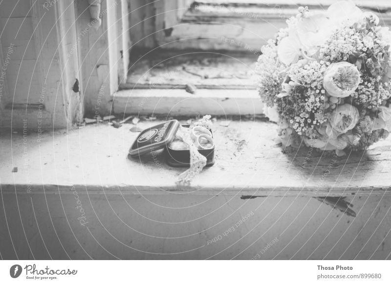 Weddingday Tin Dirty Joy Happy Happiness Ostrich Ring Window Black & white photo Day