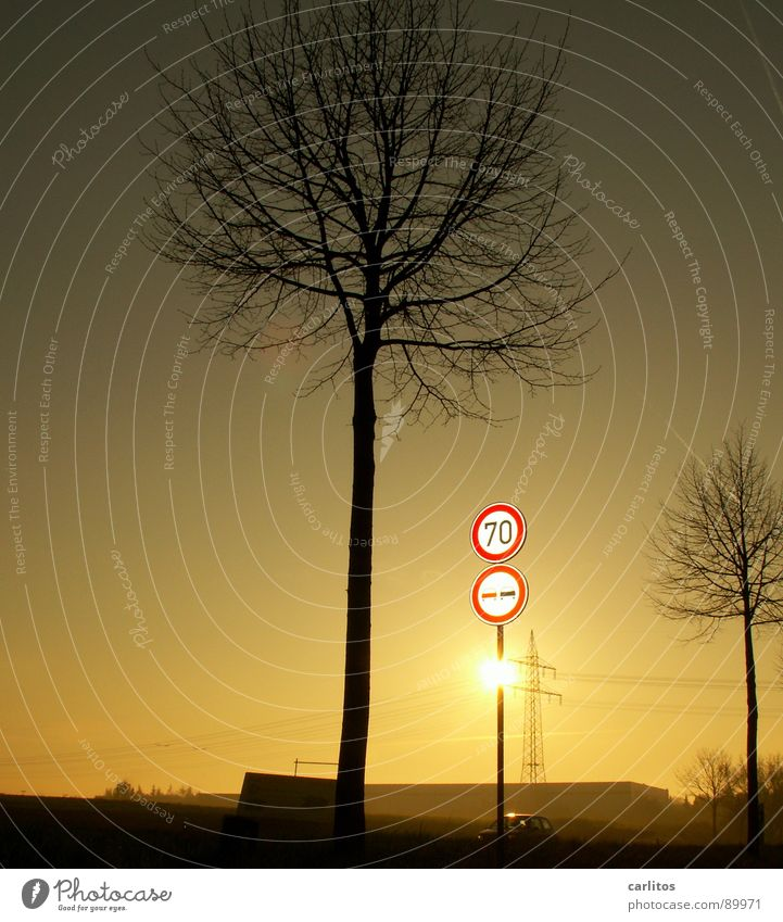 Radar control, homemade ... Country road Federal highway Speed limit Road sign Vehicle spot-check Parking ticket Flensburg Back-light Electricity pylon Tree
