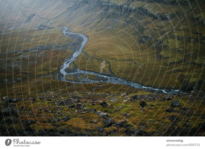 I'm in Iceland. Nature Landscape Autumn Moss Brook River Brown Green Riverbed Valley valley view Carpet of moss Colour photo Subdued colour Exterior shot