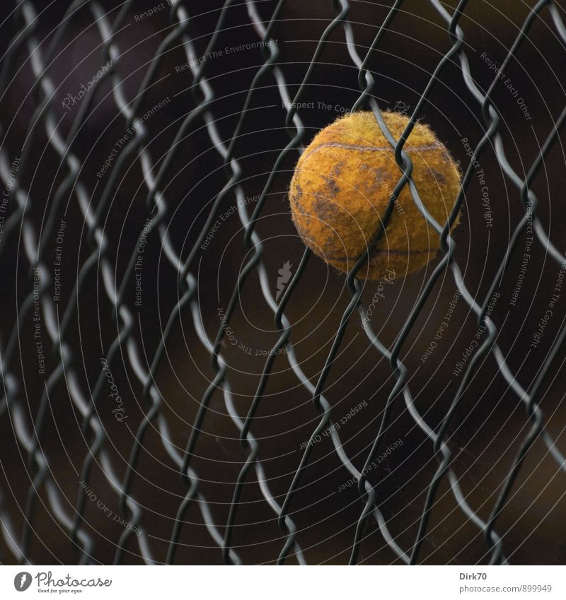 The game's over. Sports Ball sports Tennis Tennis ball Sporting Complex Tennis court Turin Sporting grounds Fence Wire fence Wire netting Wire netting fence