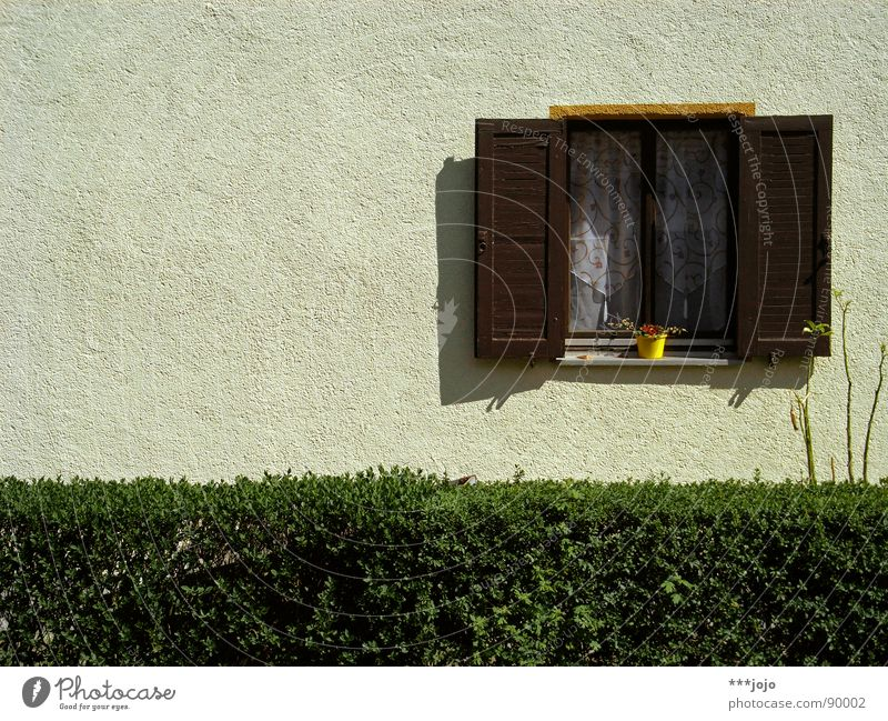 Flower House (Residential Structure) Window Wall (building) Germany Arrangement Gloomy Living or residing Boredom Curtain Flowerpot Hedge Settlement Shutter