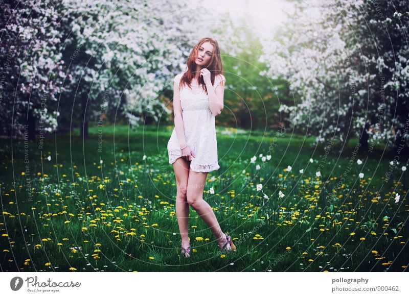 Human being Woman Nature Vacation & Travel Youth (Young adults) Plant Summer Young woman Sun Landscape 18 - 30 years Adults Life Spring Meadow Grass