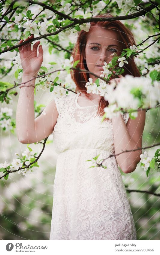 springtime II Human being Feminine Young woman Youth (Young adults) Woman Adults Body 1 18 - 30 years Nature Landscape Plant Spring Summer Beautiful weather