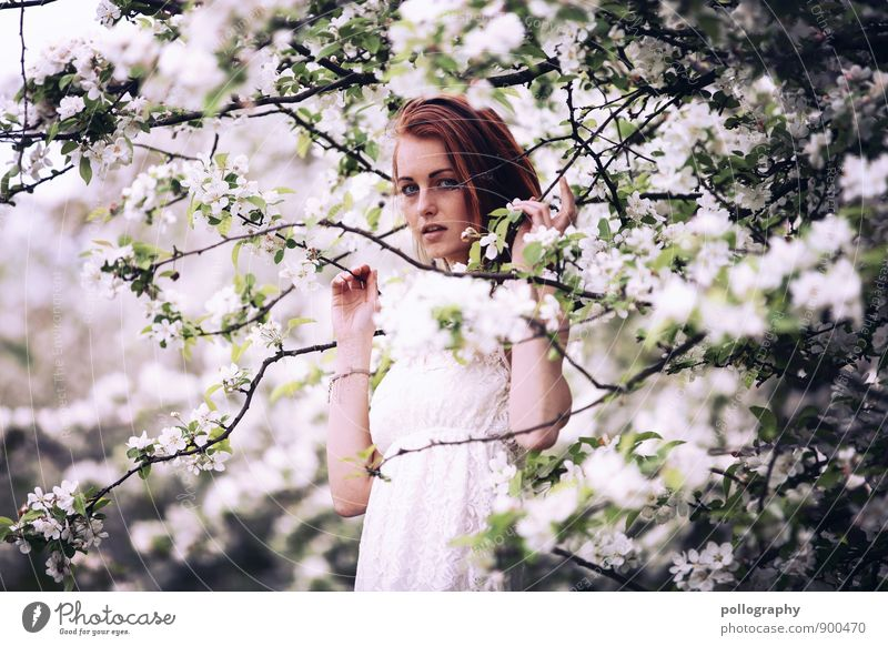 springtime III Human being Feminine Young woman Youth (Young adults) Woman Adults Life Body 1 18 - 30 years Nature Landscape Plant Spring Summer
