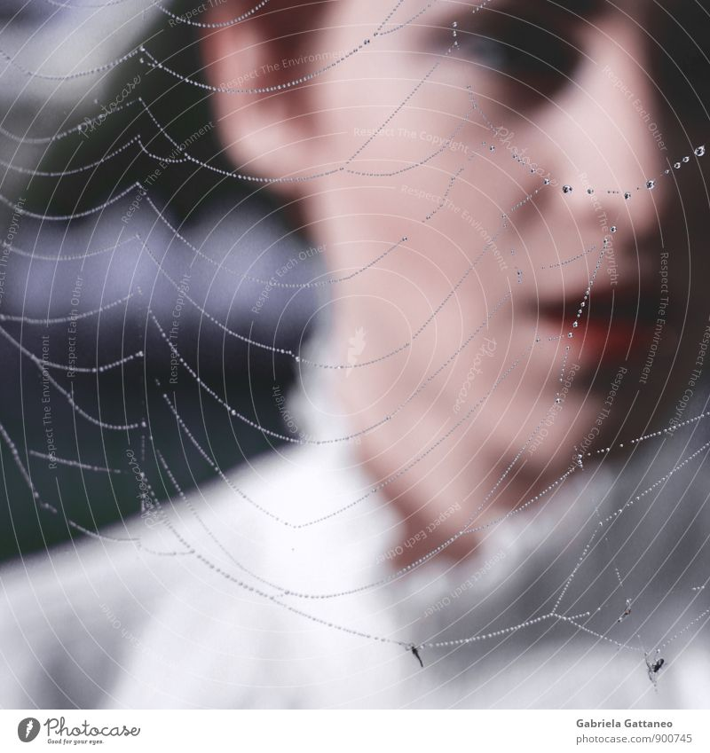 the breath Feminine 1 Human being 18 - 30 years Youth (Young adults) Adults Beautiful Net Spider's web Blouse Colour photo Exterior shot Shallow depth of field