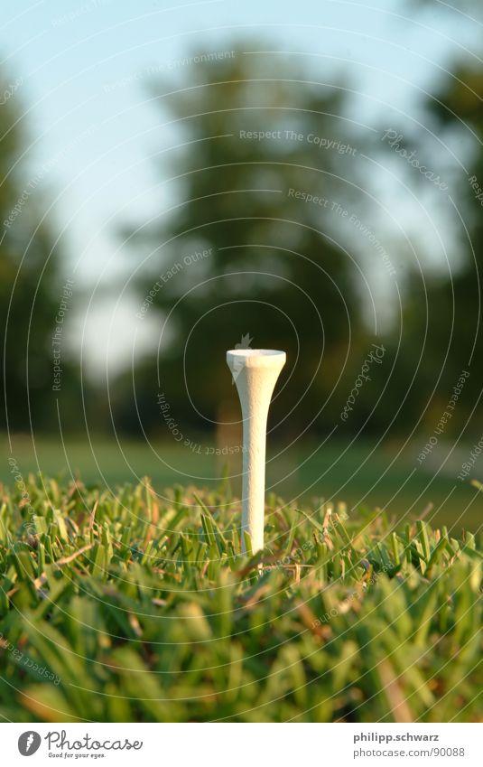 Green Meadow Playing Grass Tea Golf Golf course Ball sports