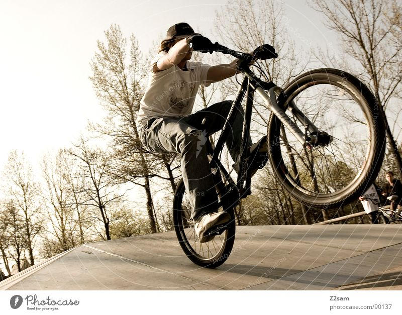 Youth (Young adults) Sky Tree Sun Summer Sports Jump Style Park Warmth Contentment Bicycle Tall Action Modern Dangerous