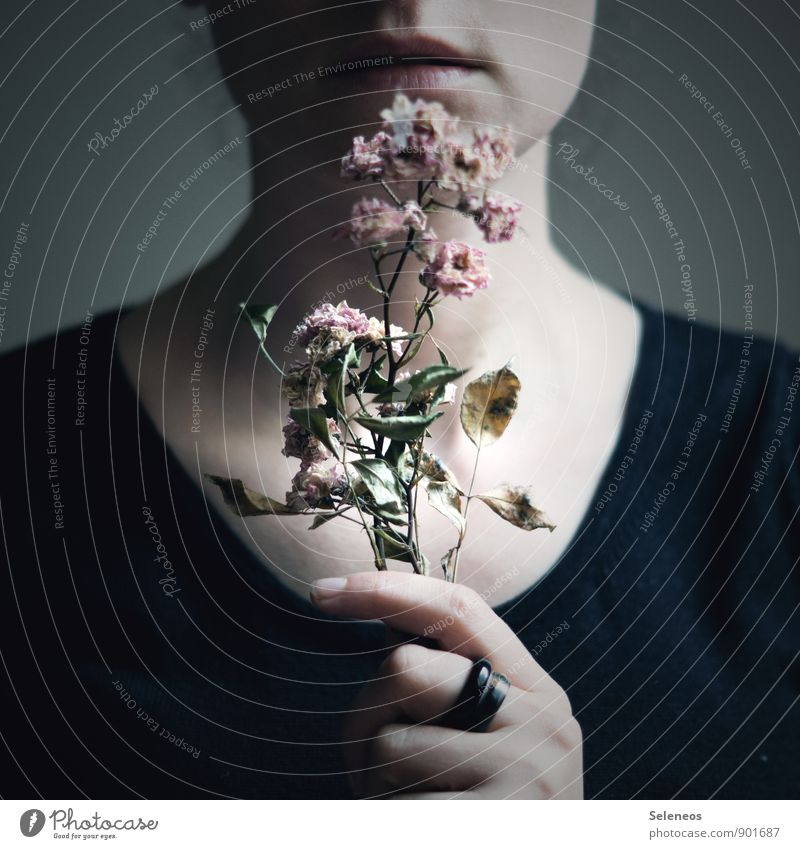 remembrance Human being Mouth Lips Hand Fingers 1 Autumn Flower Leaf Blossom Ring Touch Blossoming Fragrance Near Natural Dry Past Transience Shriveled Faded