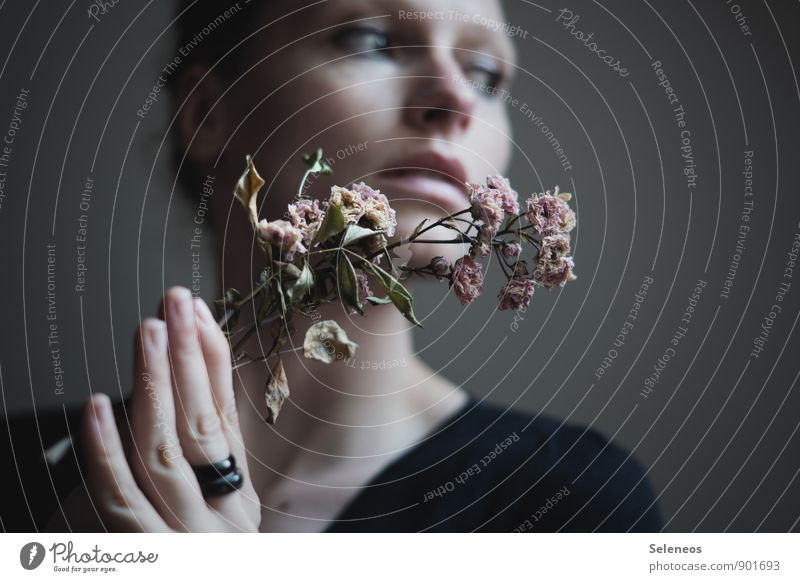 flowers Body Skin Face Human being Feminine Woman Adults Hand Fingers 1 Flower Leaf Blossom Ring Dream Sadness Emotions Moody Lovesickness Faded Shriveled