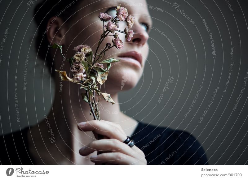 Human being Woman Plant Flower Hand Loneliness Leaf Face Adults Blossom Sadness Emotions Natural Feminine Moody Fingers