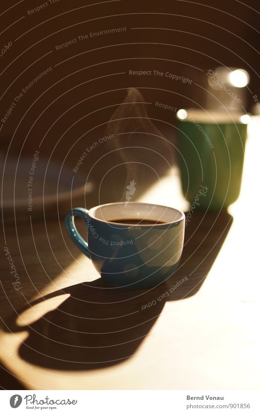Blue Green White Black Warmth Bright Brown Food Fresh Beginning To enjoy Beverage Break Coffee Hot Delicious