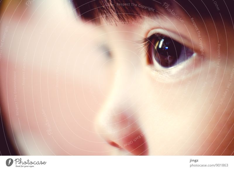iris Toddler Eyes 1 Human being 3 - 8 years Child Infancy Observe Illuminate Near Calm Center point Concentrate Reflection Looking Soft Focal point Colour photo