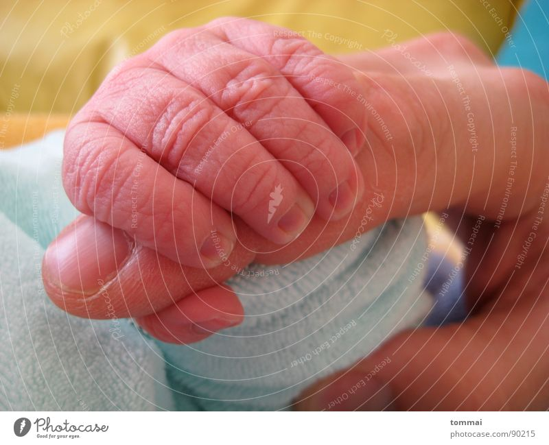 Child Man Blue Hand Love Happy Baby Pink Fingers Mother Family & Relations Toddler Society Father Thumb Birth