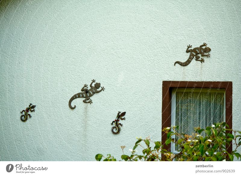 House (Residential Structure) Window Wall (building) Garden Metal Facade Family & Relations Decoration Multiple Group of animals Copy Space Metalware Climbing