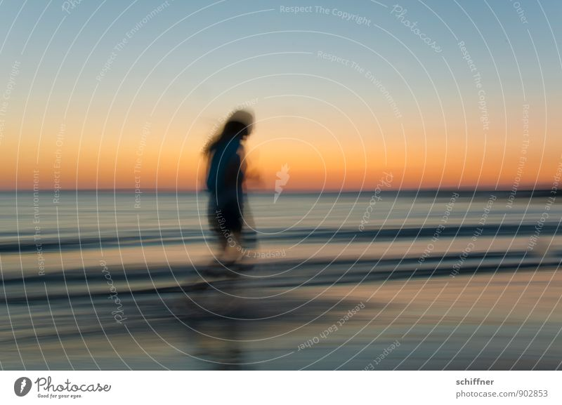 Late Sports II Human being Feminine Girl Young woman Youth (Young adults) 1 Cloudless sky Sunrise Sunset Beautiful weather Waves Coast Lakeside Beach Ocean