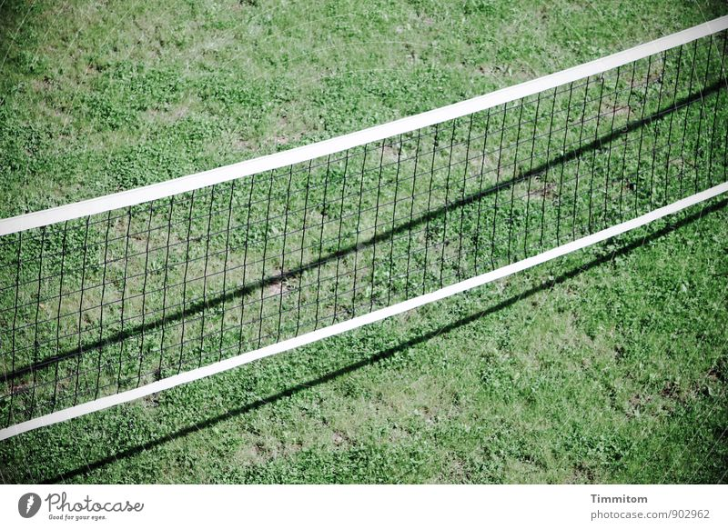 Green White Black Emotions Grass Sports Line Wait Esthetic Simple Clean Athletic Playing field Net