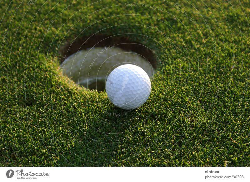 Nature Green Sports Ball Leisure and hobbies Golf Ball sports Golf ball