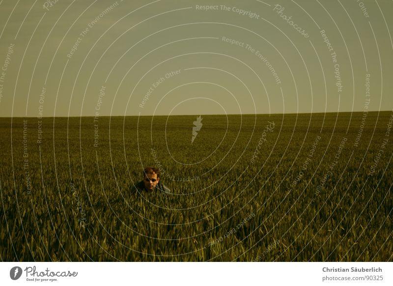 CUCKUCK Meadow Green Grass Horizon Sunglasses Field Spring Sky Hair and hairstyles Blue hoo-hoo kukuk Cuckoo