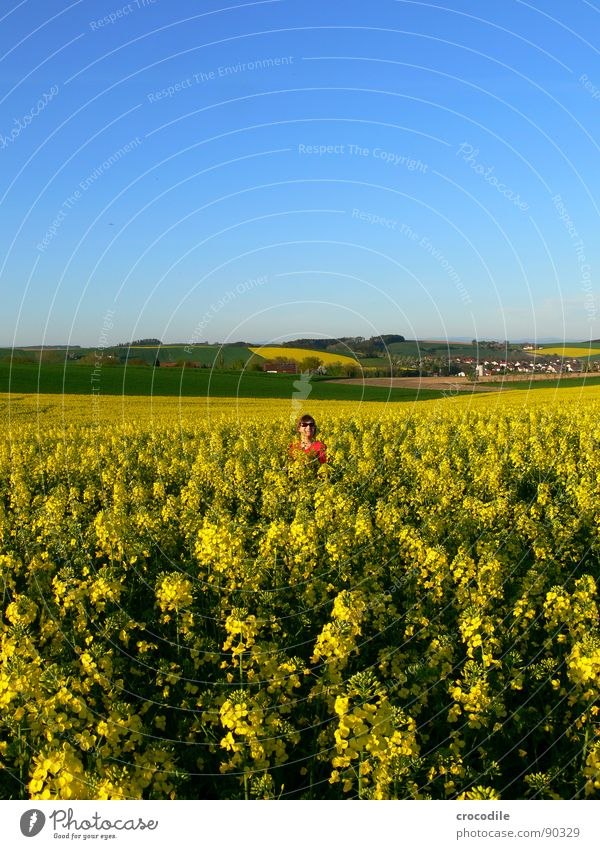 Woman Sky Joy Landscape Yellow Meadow Spring Freedom Small Laughter Field Leisure and hobbies Stand Sweet Stripe Beautiful weather
