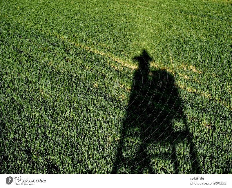 Photo hunter on the stalk Field Hunting Blind Hunter Photographer Provoke Aim Shoot Green Wood Take a photo Shadow creep up focus Climbing Tall Teatime