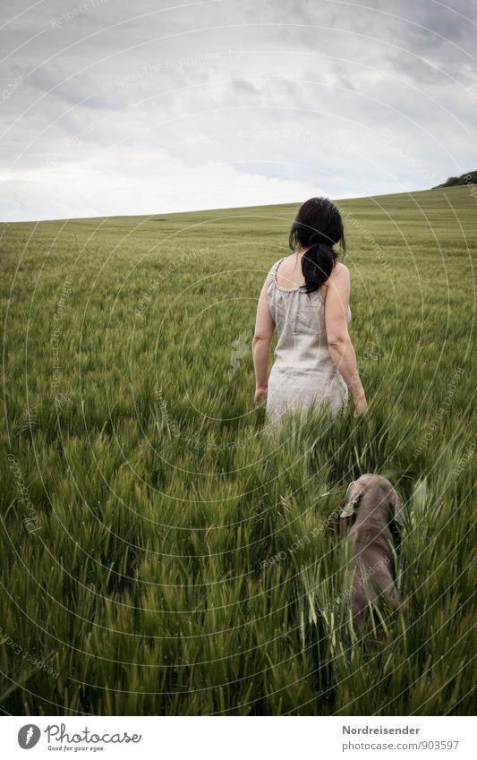 Dog Human being Nature Vacation & Travel Youth (Young adults) Summer Relaxation Young woman Landscape Calm Joy Animal Life Feminine Natural Together