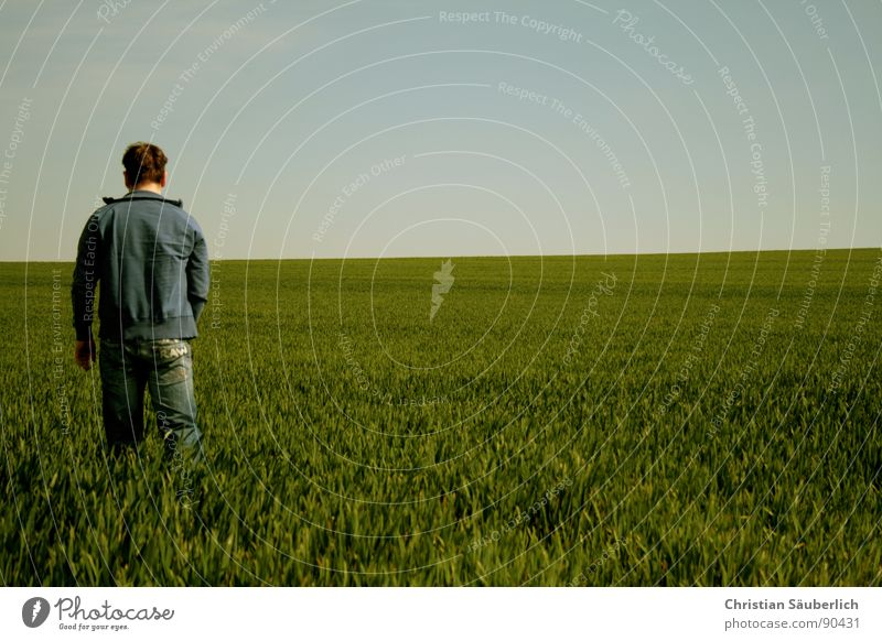 Delicate Sound of Summer Green Field Horizon Going Spring Loneliness pink floyd In the wide hallway sky grass Blue walk the grass