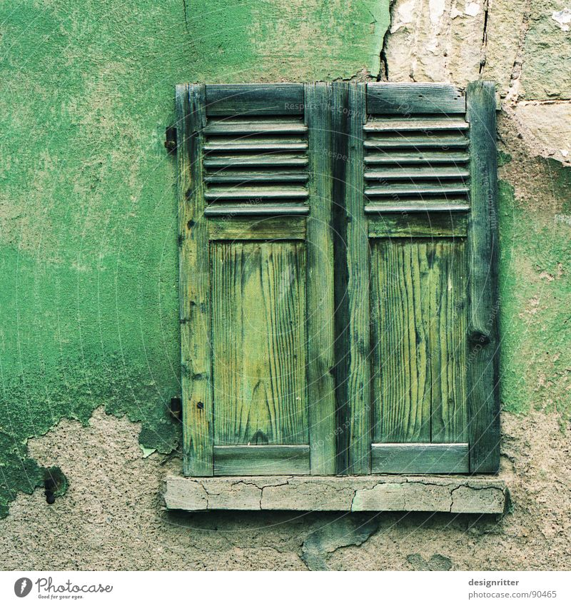 rubbed off Window Shutter Wood Green Wall (barrier) Plaster Tone-on-tone Crumbled Ruin Wood flour Detail Colour Wooden board Stone Old color finery pavers